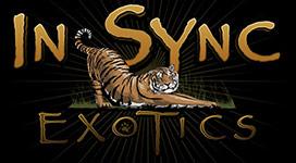 insync-exotics-logo